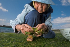 woman-seaweed-615