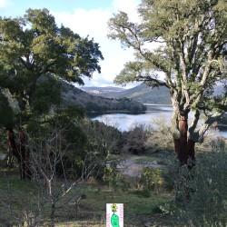 Gavoi Gusana Lake