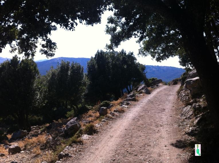 Path to Monte Novo San Giovanni Orgosolo