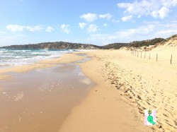 Su Giudeu beach 4 AF