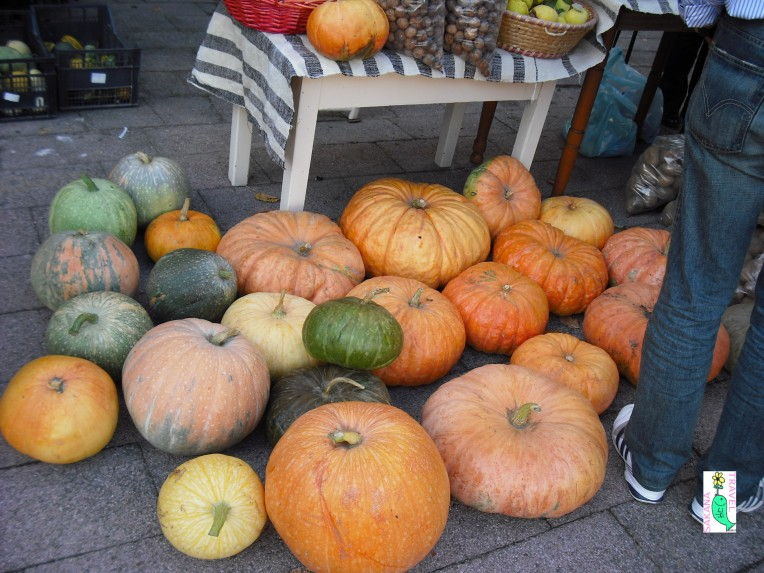 Gavoi pumpkins