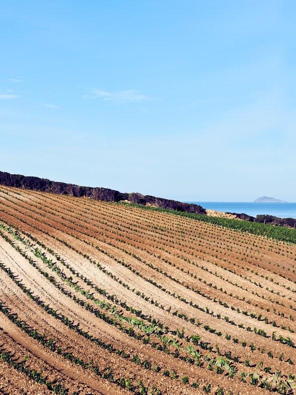 MAG18_NOV_TR110718_Sardinia13