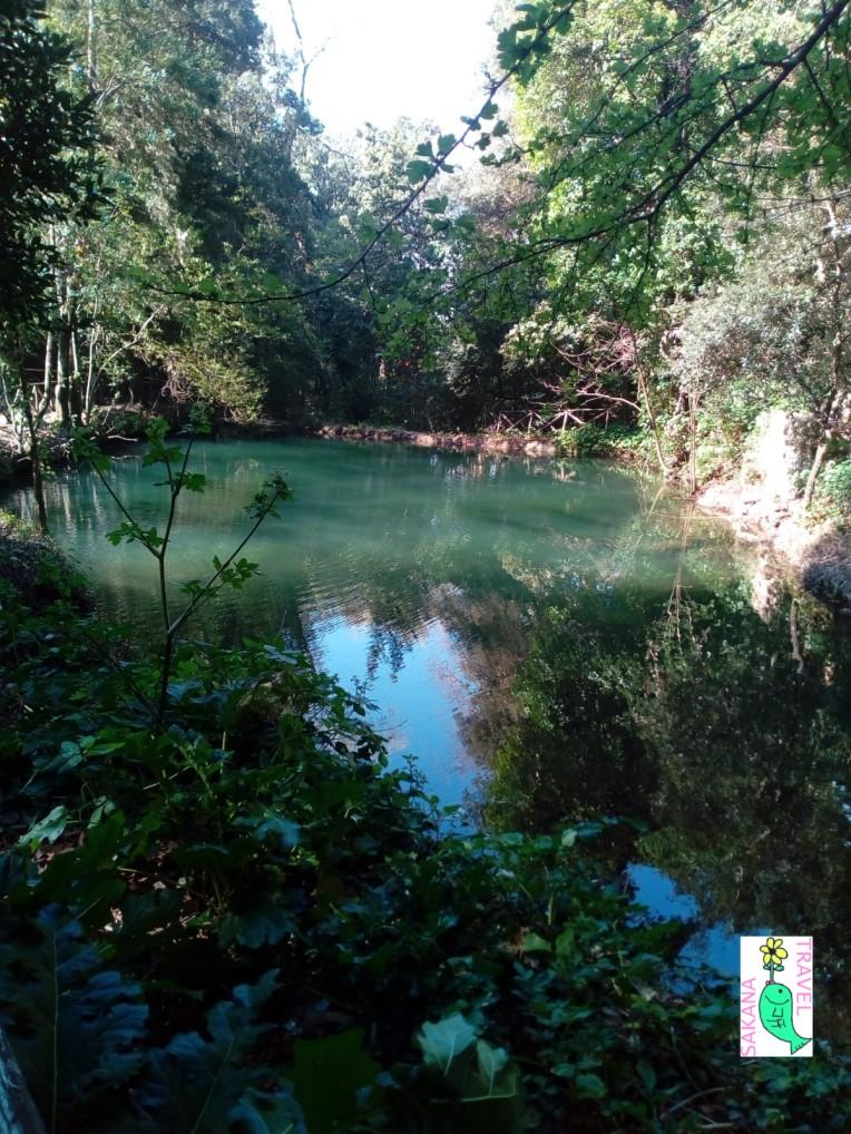 Parco Aymerich Laconi Pond