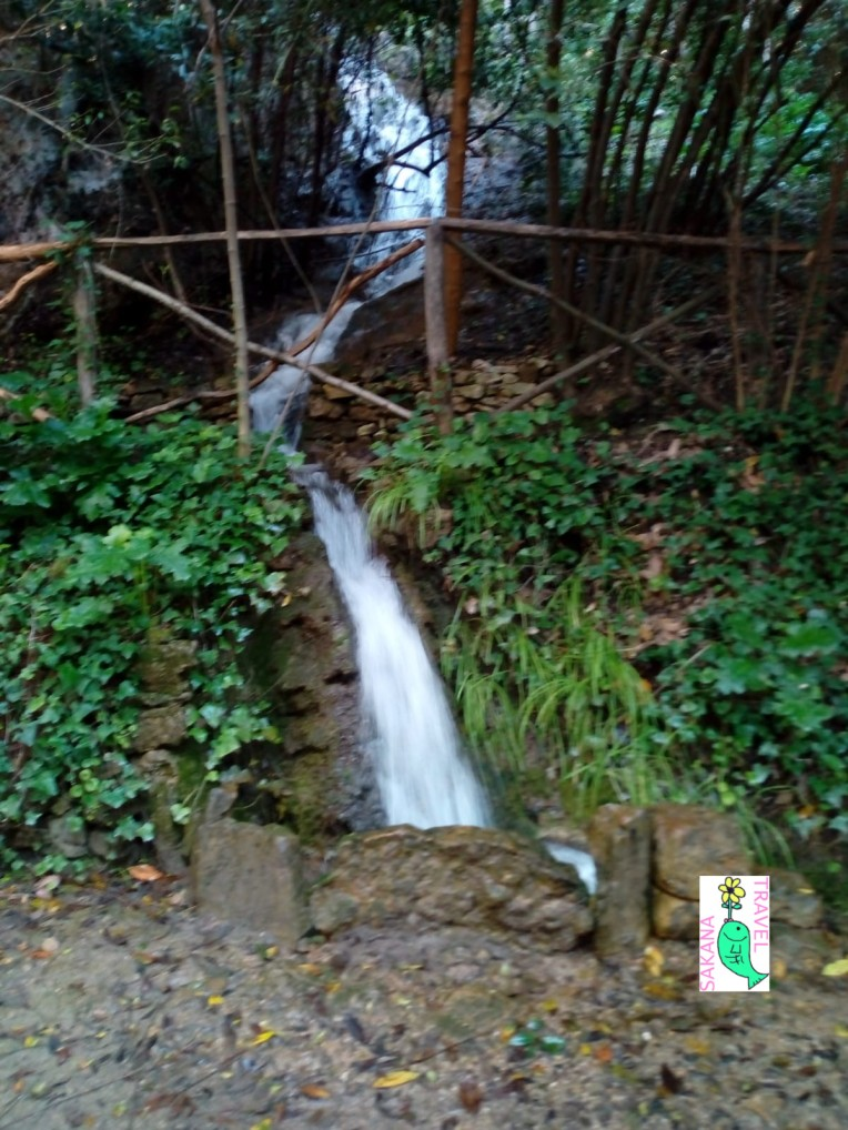 Parco Aymerich Laconi Stream